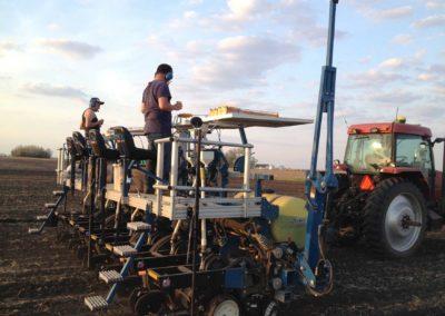 Hybrid Planting